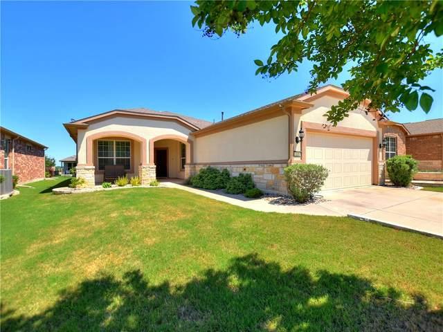 135 Old Blue Mountain Ln, Georgetown, TX 78633 (#1352943) :: Ben Kinney Real Estate Team