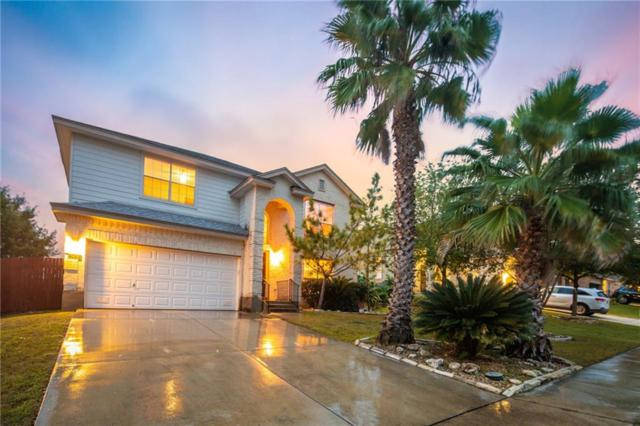 2430 Duval Dr, New Braunfels, TX 78130 (#1361279) :: Ana Luxury Homes
