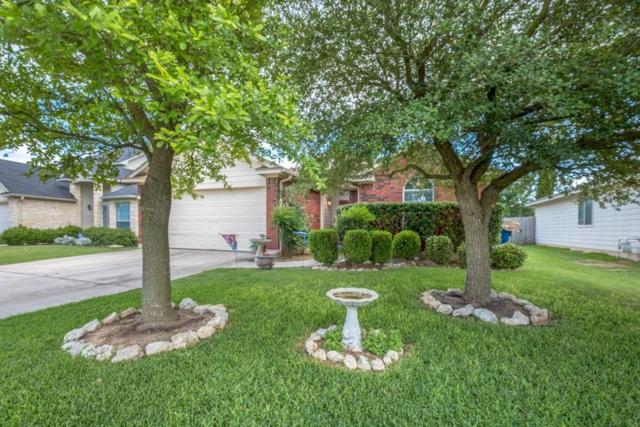 210 Watergate Way, Hutto, TX 78634 (#1371863) :: Forte Properties