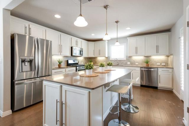 821 Hamilton Ln, Georgetown, TX 78633 (#1375910) :: Douglas Residential