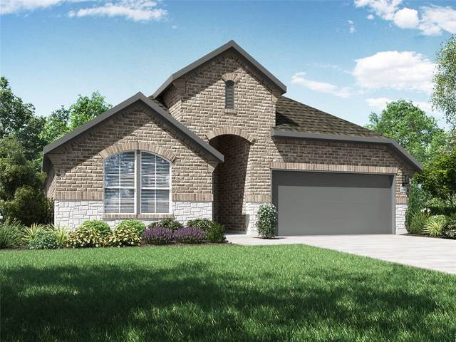 20225 Crested Caracara Ln, Pflugerville, TX 78660 (#1377550) :: All City Real Estate