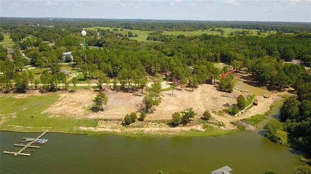 22251 Mallards Cove Ct, Bullard, TX 75757 (#1383863) :: The Heyl Group at Keller Williams