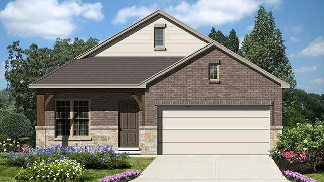 709 Tupelo Tank Dr, New Braunfels, TX 78130 (#1389294) :: The Perry Henderson Group at Berkshire Hathaway Texas Realty