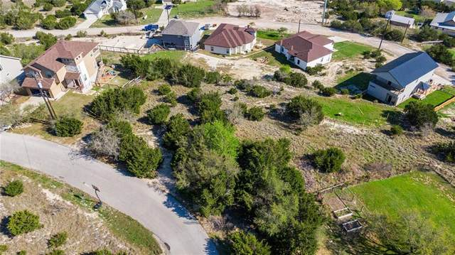 17621 Panorama Dr, Dripping Springs, TX 78620 (#1391474) :: The Summers Group