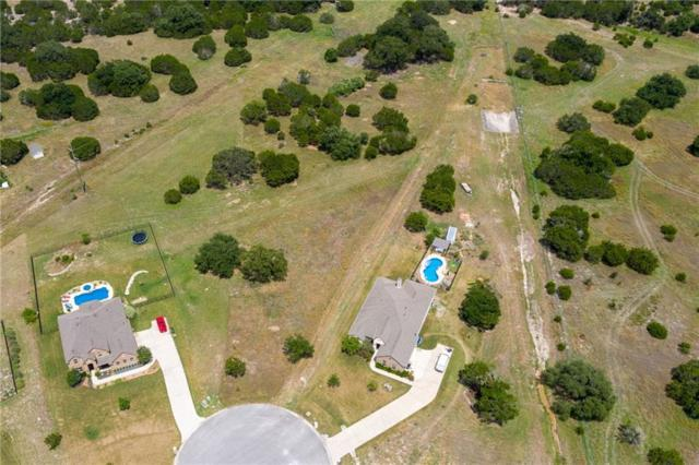 205 Serrato Cv, Driftwood, TX 78619 (#1391549) :: Lucido Global