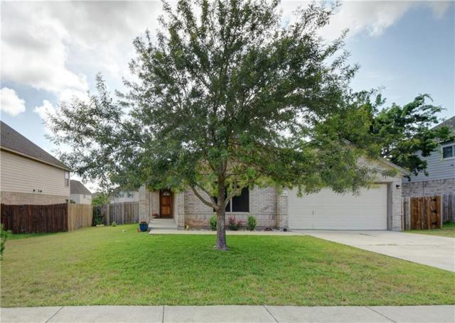 19709 San Chisolm Dr, Round Rock, TX 78664 (#1402813) :: Watters International