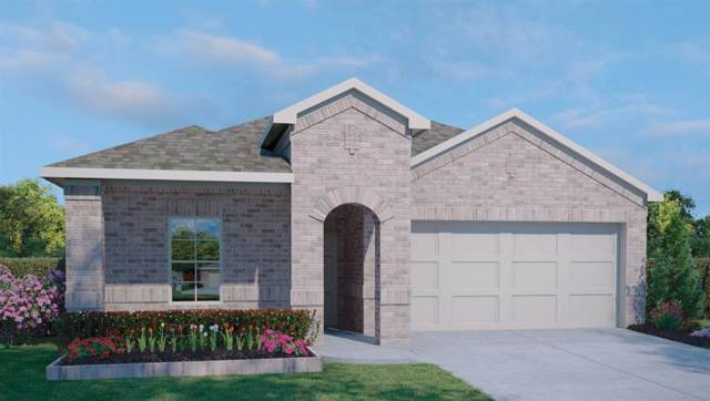 121 Stellamar Dr, Hutto, TX 78634 (#1405930) :: Lucido Global