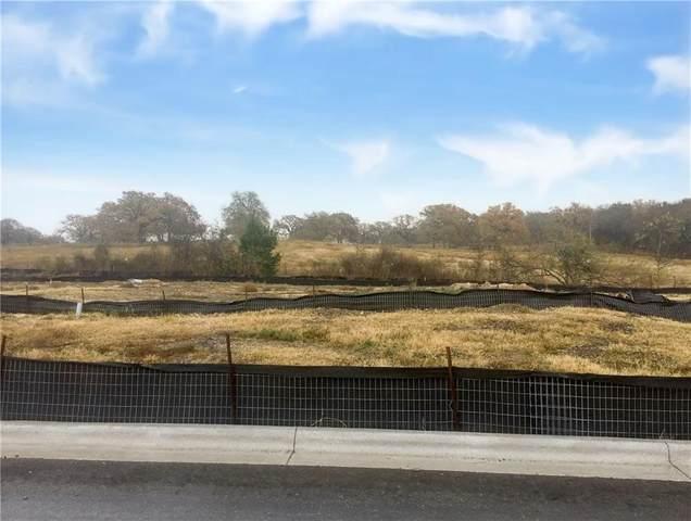 16905 Adoro Dr, Manor, TX 78653 (#1414417) :: Azuri Group | All City Real Estate
