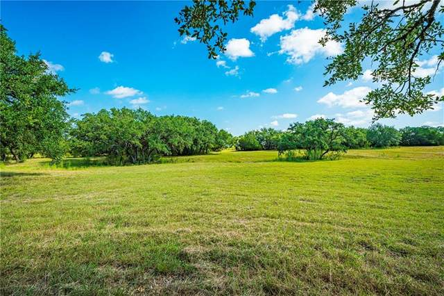Lot 48 Clear Springs Court, Marble Falls, TX 78654 (#1417321) :: 12 Points Group