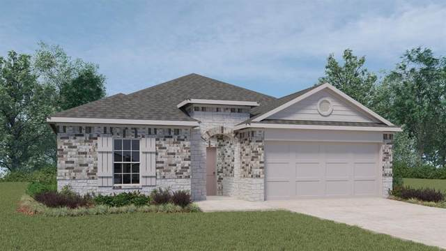 284 Cherry Laurel Ln, Kyle, TX 78640 (#1423679) :: The Perry Henderson Group at Berkshire Hathaway Texas Realty