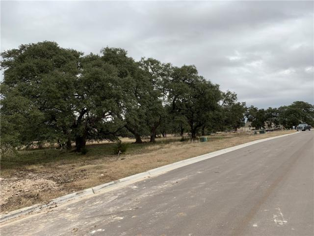 429 Dove Trail, Bertram, TX 78605 (#1429947) :: 12 Points Group