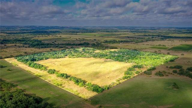 65 AC on NE County Road 359, Pontotoc, TX 76869 (#1430742) :: The Heyl Group at Keller Williams