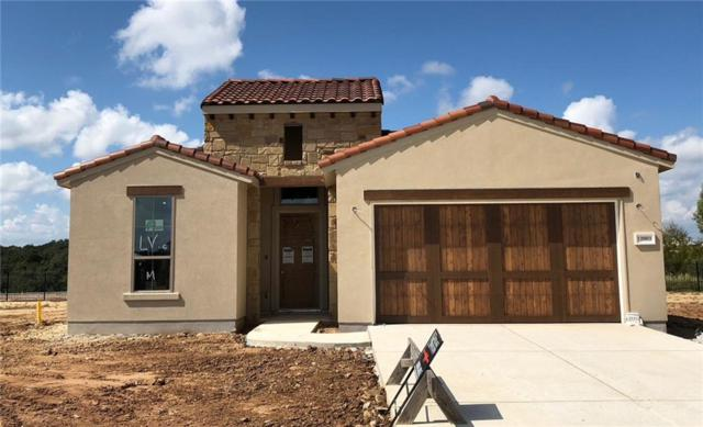 12003 Beauty Brush Dr, Bee Cave, TX 78738 (#1433355) :: Papasan Real Estate Team @ Keller Williams Realty