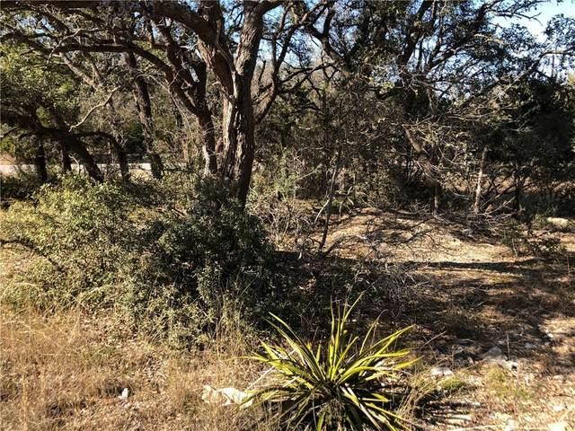00 Lewis Todd, Blanco, TX 78606 (#1433767) :: Papasan Real Estate Team @ Keller Williams Realty