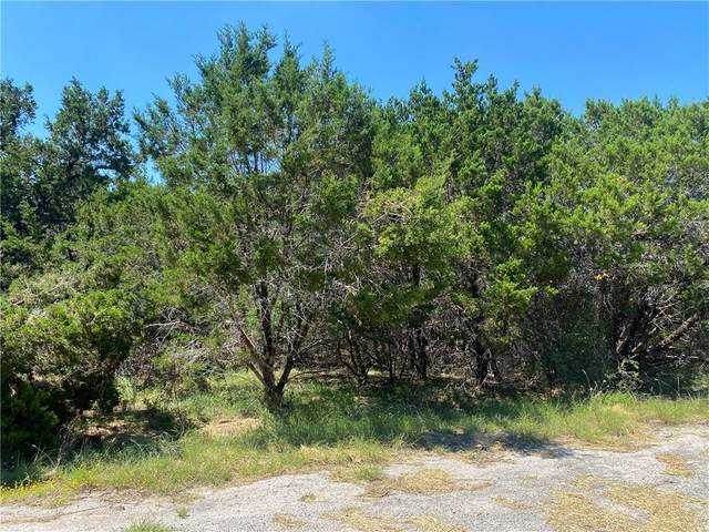 20100 Livingston Cv, Lago Vista, TX 78645 (#1439392) :: The Summers Group