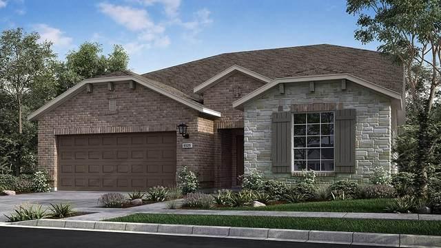 3321 Bianco Ter, Round Rock, TX 78665 (#1439833) :: Watters International