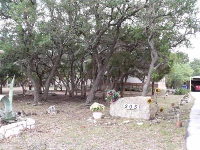 205 Oak Rdg, Dripping Springs, TX 78620 (#1471433) :: The ZinaSells Group