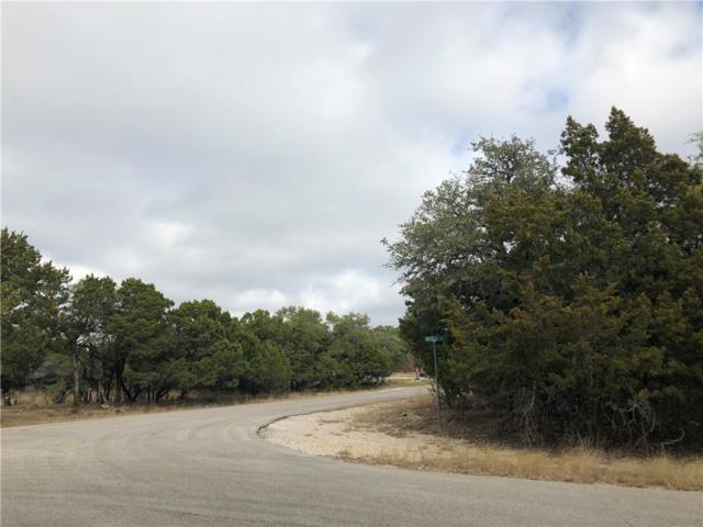 21110 Needles Cv, Lago Vista, TX 78645 (#1483764) :: Zina & Co. Real Estate