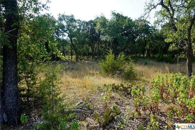 1510 Bella Vis, Canyon Lake, TX 78133 (#1495186) :: Papasan Real Estate Team @ Keller Williams Realty