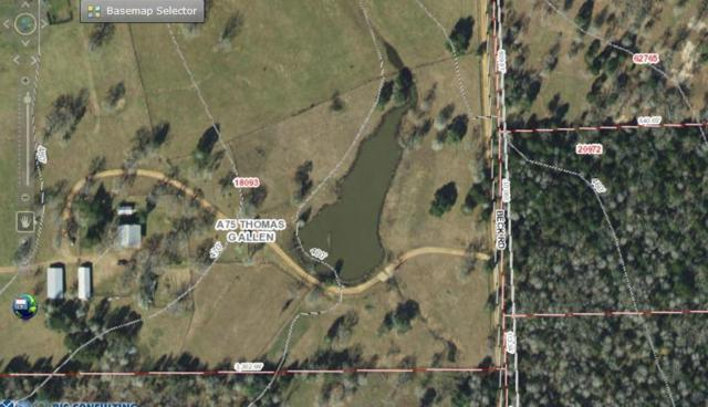 000 Beck Rd, Smithville, TX 78957 (#1499483) :: Amanda Ponce Real Estate Team