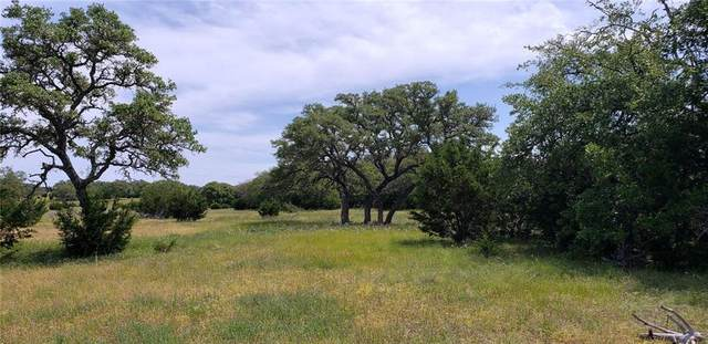 LOT 176 Blackbuck Ridge Dr, Lampasas, TX 76550 (#1499830) :: Front Real Estate Co.