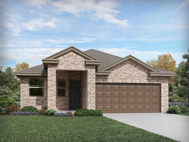 14001 Kira Ln, Manor, TX 78653 (#1517837) :: Papasan Real Estate Team @ Keller Williams Realty