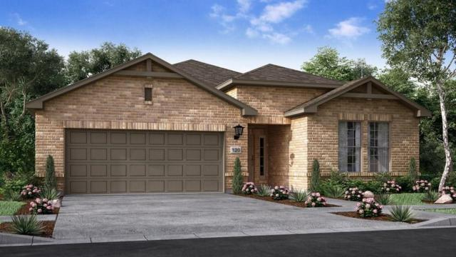 3241 Aurelia Ln, Round Rock, TX 78665 (#1519761) :: Forte Properties