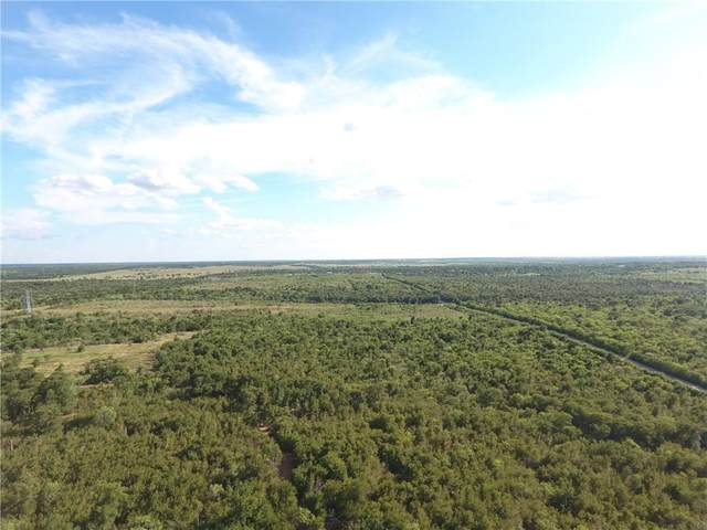 10.88 ACRES Wolf Ln L, Del Valle, TX 78617 (#1534127) :: RE/MAX IDEAL REALTY