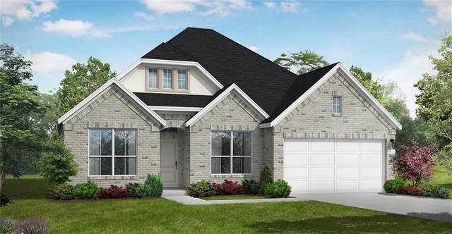 221 Lady Bug Rd, San Marcos, TX 78666 (#1534949) :: Papasan Real Estate Team @ Keller Williams Realty