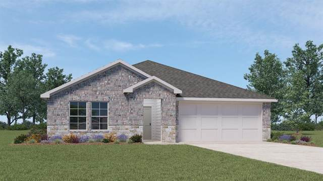 760 Ocelot Ct, Seguin, TX 78155 (#1545312) :: Papasan Real Estate Team @ Keller Williams Realty