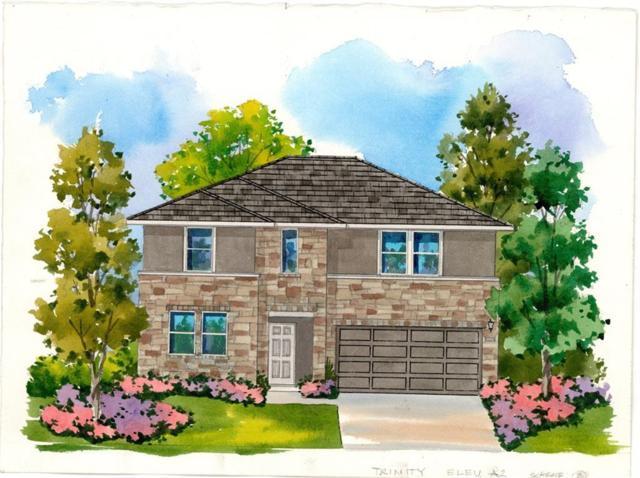 245 Tulum Terrace, Leander, TX 78641 (#1547292) :: RE/MAX Capital City
