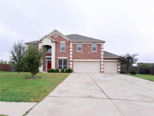2917 Kerbey Heights Ct, Pflugerville, TX 78660 (#1550707) :: Watters International
