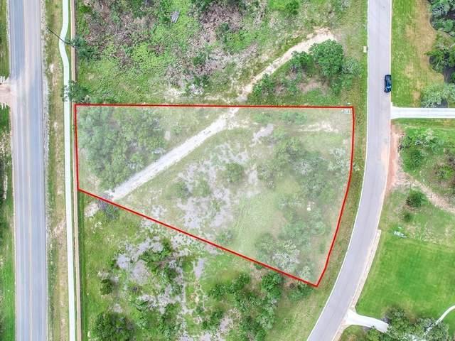 3304 Whitt Park Path, Leander, TX 78641 (#1556469) :: Papasan Real Estate Team @ Keller Williams Realty