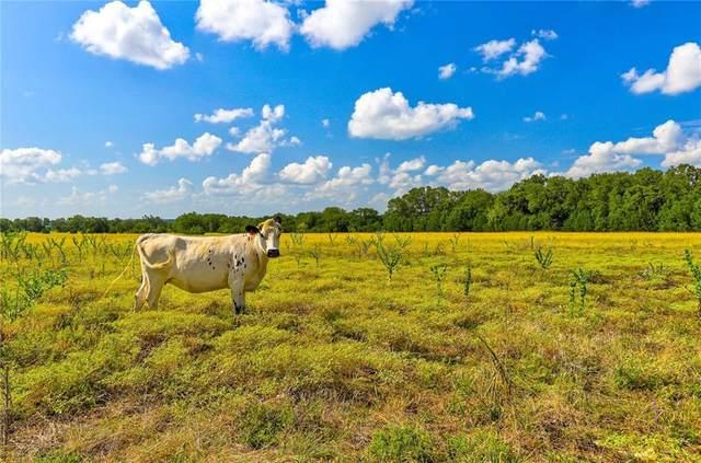 Lot 3 TBD Cr 204, Liberty Hill, TX 78642 (#1559263) :: Papasan Real Estate Team @ Keller Williams Realty