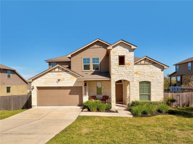 17908 Linkview Dr, Dripping Springs, TX 78620 (#1568583) :: Watters International