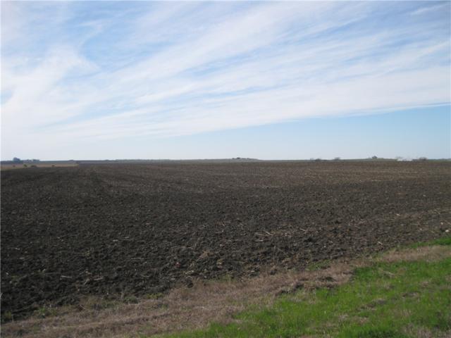 0 C. R. 459, Coupland, TX 78615 (#1575301) :: Realty Executives - Town & Country