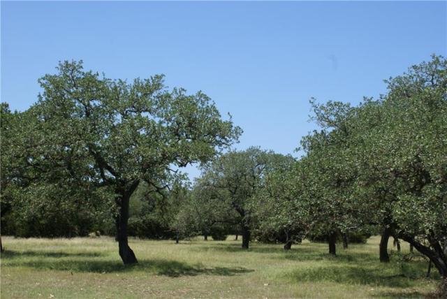 000 Barton Bend Lot 3, Dripping Springs, TX 78620 (#1576405) :: Papasan Real Estate Team @ Keller Williams Realty