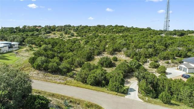 Lot 19 Vista Estates Ct, Spicewood, TX 78669 (#1578102) :: RE/MAX IDEAL REALTY
