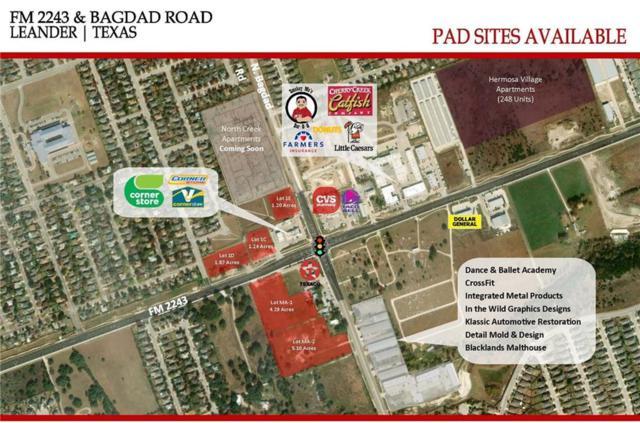 0000 Bagdad Road, Leander, TX 78641 (#1589683) :: Papasan Real Estate Team @ Keller Williams Realty
