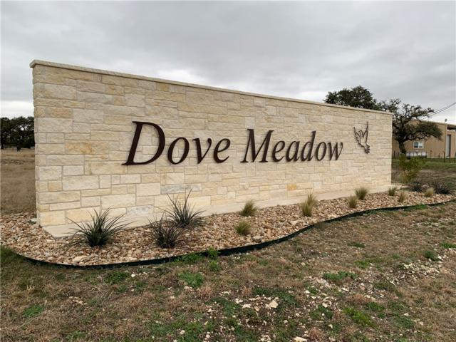 425 Dove Trail, Bertram, TX 78605 (#1591683) :: 12 Points Group