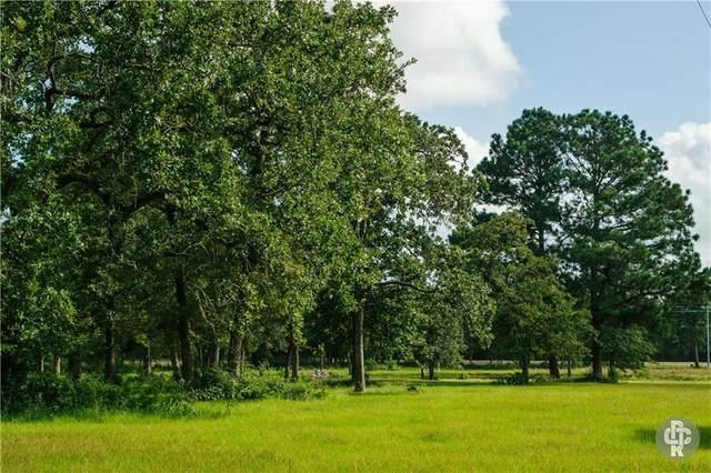 1869 Fm 535, Smithville, TX 78957 (#1632487) :: Papasan Real Estate Team @ Keller Williams Realty