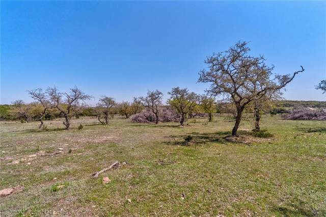 Tract 3 Destiny Hills Dr, Austin, TX 78738 (#1636346) :: Lauren McCoy with David Brodsky Properties