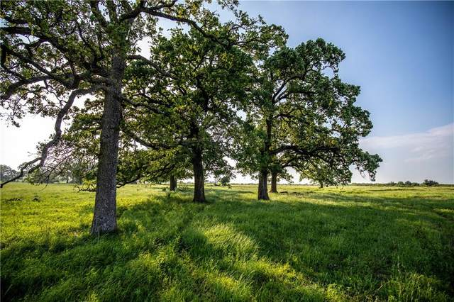 TBD Fm 1373, Bremond, TX 76629 (#1636802) :: The Summers Group