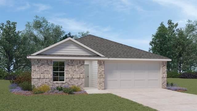 117 Hazel Grv, San Marcos, TX 78666 (MLS #1642859) :: Bray Real Estate Group