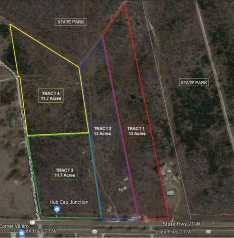 TBD Tract 1 E Sh 21, Bastrop, TX 78602 (#1644957) :: KW United Group