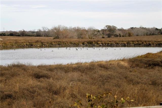 1747 E Old Hallettsville Rd, Flatonia, TX 78941 (#1645544) :: Papasan Real Estate Team @ Keller Williams Realty
