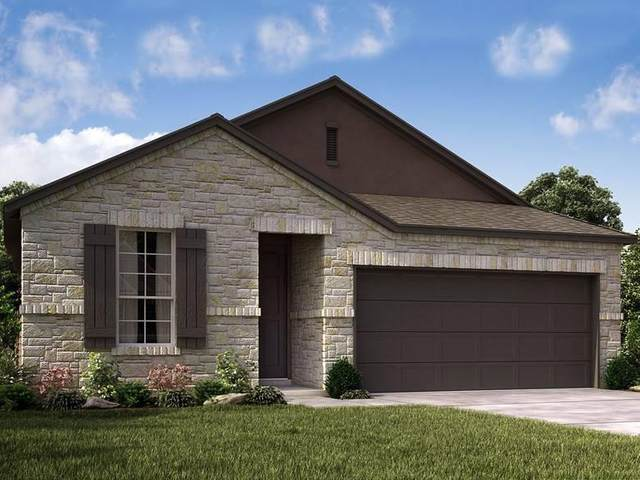 218 Dome Peak Ter, Dripping Springs, TX 78620 (#1645998) :: The Gregory Group