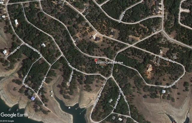 21607 Cardinal Ave, Lago Vista, TX 78645 (#1647635) :: Zina & Co. Real Estate