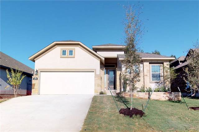 209 Cross Mountain Trl, Georgetown, TX 78628 (#1660005) :: The Perry Henderson Group at Berkshire Hathaway Texas Realty