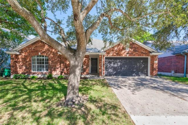 16902 Isle Of Man Rd, Pflugerville, TX 78660 (#1661829) :: Watters International